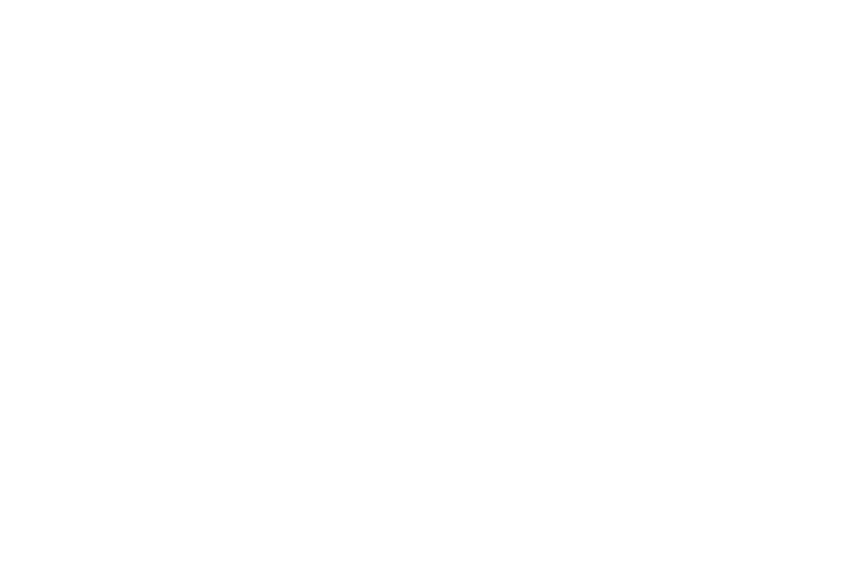 BEST FOREIGN FEATURE - Idyllwild International Festival of Cinema - 2019 copy